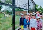 10. Król ZOO w Borysewie